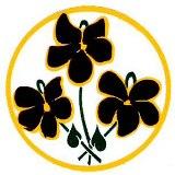 logo3violetscolor_jpg